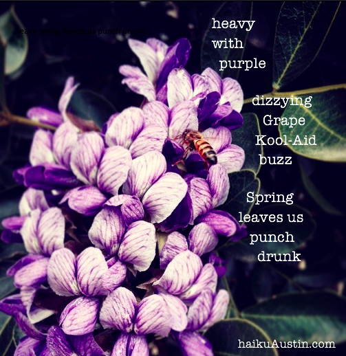 GrapeKoolAid haiku for IG